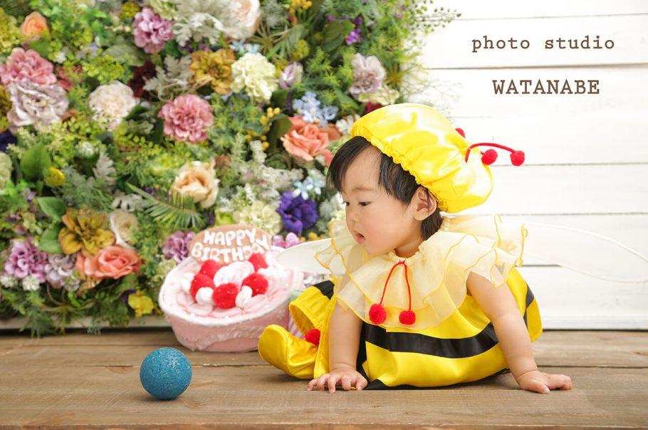 可愛い蜂さん~お誕生日撮影~